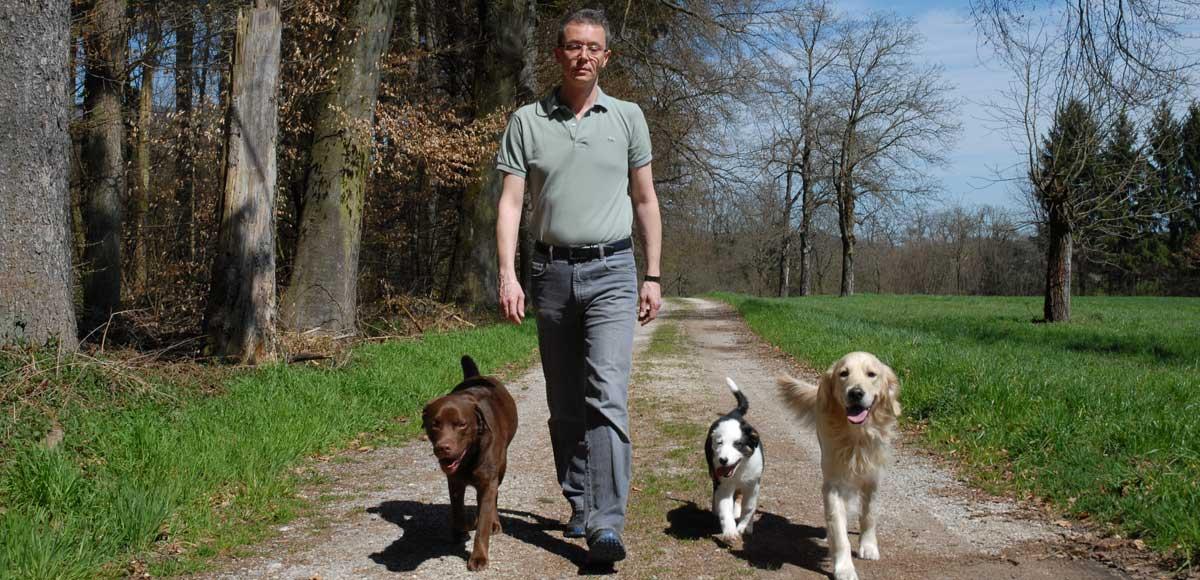 Hundetrainer Hundeschule Solothurn
